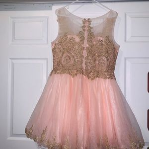 Prom/Quince Dress